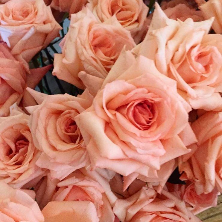 Karen Tran Floral Masterclass